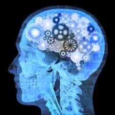 neuroscience of trust